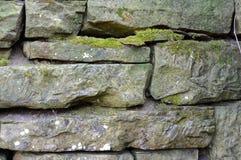 El musgo cubrió rocas Fotografía de archivo