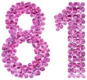 El número árabe 81, ochenta uno, de las flores de la lila, aisló o Fotos de archivo