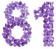 El número árabe 81, ochenta uno, de las flores de la viola, aisló o Imagenes de archivo
