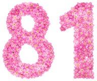 El número árabe 81, ochenta uno, de nomeolvides rosada florece, Imagenes de archivo