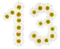 El número árabe 13, trece, de las flores blancas de la manzanilla, es Imagen de archivo libre de regalías