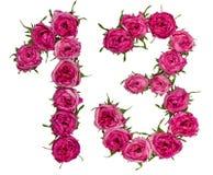 El número árabe 13, trece, de las flores rojas de subió, aislado Imágenes de archivo libres de regalías