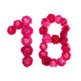 El número 18 de las flores de un rojo y rosado subió en un fondo blanco Fotografía de archivo libre de regalías