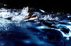 El nadador Foto de archivo libre de regalías