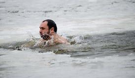 El nadar en el hielo-agujero fotos de archivo libres de regalías
