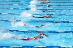 El nadar en la piscina Fotos de archivo libres de regalías
