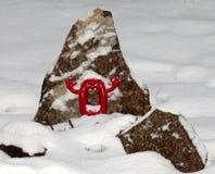 El negativ rojo pone a cero adentro nieve Imágenes de archivo libres de regalías