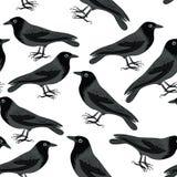 El negro canta modelo inconsútil Ilustración del vector en el fondo blanco Fotografía de archivo libre de regalías