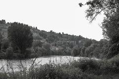 El negro de Green Fotos de archivo libres de regalías