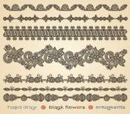 El negro del drenaje de la mano florece los ornamentos Foto de archivo libre de regalías
