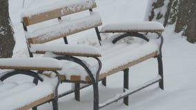 El nevar en banco en parque metrajes