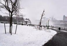 El nevar en el parque Imágenes de archivo libres de regalías