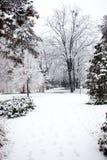 El nevar en Park City de Novi Sad Fotografía de archivo