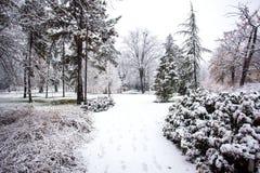 El nevar en Park City de Novi Sad Imagen de archivo