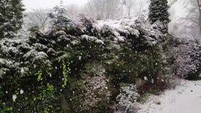 El nevar en Roundhay Leeds metrajes