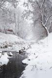 El nevar sobre una corriente del invierno Imágenes de archivo libres de regalías