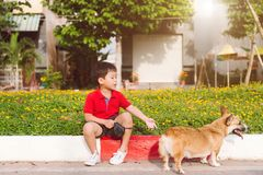 El niño abraza cariñosamente su perro casero, un corgi del pembroke foto de archivo