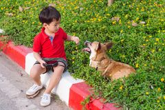 El niño abraza cariñosamente su perro casero, un corgi del pembroke foto de archivo libre de regalías