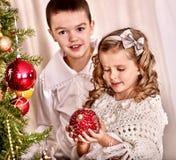 El niño adorna en el árbol de navidad Foto de archivo libre de regalías