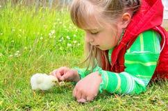El niño con un pollo Fotos de archivo