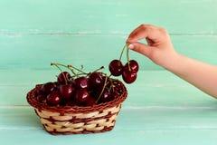 El niño consigue tres cerezas de la cesta Fruta dulce fresca en la cesta Foto de archivo libre de regalías