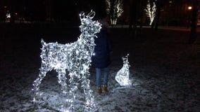 El niño da un paseo en un parque del invierno, tarde, cerca de las figuras que brillan intensamente de animales Las liebres y los metrajes
