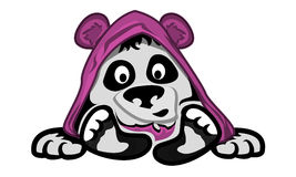 El niño de la panda Foto de archivo