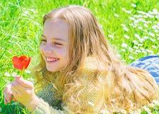 El niño disfruta de la fragancia del tulipán mientras que miente en el prado La muchacha en cara feliz sostiene la flor roja del  foto de archivo libre de regalías