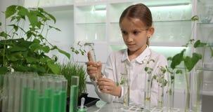 El niño en el laboratorio de química, almácigos crecientes de la ciencia de la escuela experimenta, la biología 4K almacen de video