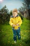 El niño en un césped Imágenes de archivo libres de regalías
