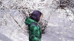 El niño encantador alegre sacude una rama nevada, cámara lenta almacen de video