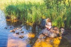El niño está alimentando los patos en el río, patos en las cañas Foto de archivo