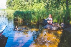El niño está alimentando los patos en el río, patos en las cañas Imagen de archivo