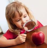 El niño está considerando una manzana de la lupa Foto de archivo