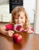 El niño está considerando una manzana de la lupa Imagen de archivo libre de regalías