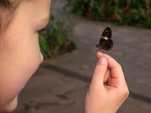 El niño está sosteniendo una mariposa en sus manos Imágenes de archivo libres de regalías