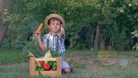 El niño feliz del pueblo come la zanahoria y los pulgares de las demostraciones se incorporan cerca del cajón de madera con las v metrajes