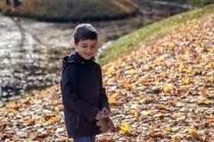 El niño feliz del retrato en el parque recoge las hojas de otoño por el río fotos de archivo libres de regalías