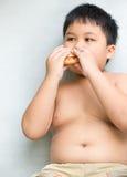 El niño gordo obeso del muchacho come la hamburguesa del pollo Imágenes de archivo libres de regalías