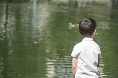 El niño mira el cisne imagen de archivo