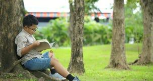 El niño pequeño asiste debajo del árbol en un día soleado y lee un libro almacen de video