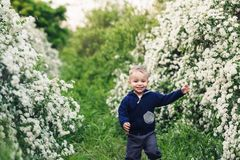 El niño pequeño corre feliz en parque entre los arbustos del spirea imagenes de archivo