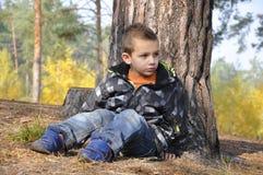 El niño pequeño del bosque se sienta cerca de un pino. Foto de archivo