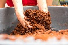 El niño pequeño está traspalando al suelo mezclado, preparación para plantar el árbol fotos de archivo libres de regalías