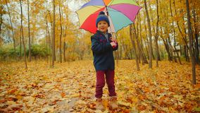 El niño pequeño feliz está caminando en el parque del otoño debajo del paraguas metrajes
