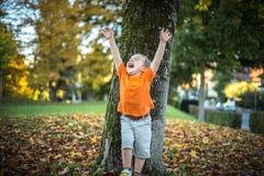 El niño pequeño feliz se divierte que juega con las hojas de oro caidas Fotos de archivo