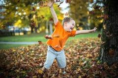 El niño pequeño feliz se divierte que juega con las hojas de oro caidas Foto de archivo libre de regalías