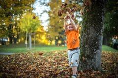 El niño pequeño feliz se divierte que juega con las hojas de oro caidas Foto de archivo