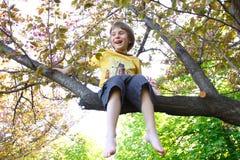 El niño pequeño feliz se divierte que se sienta en rama de la cereza floreciente t fotos de archivo libres de regalías