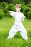 El niño pequeño hace ejercicios del karate Fotografía de archivo